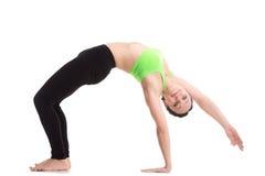 Wild Thing yoga pose Royalty Free Stock Image