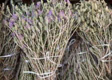 Wild thyme on the market Royalty Free Stock Photos