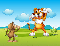 A Wild tiger and a monkey Royalty Free Stock Image