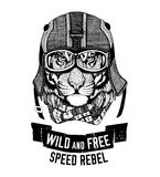Wild tiger Wild cat Be wild and free T-shirt emblem, template Biker, motorcycle design Hand drawn illustration Royalty Free Stock Photo