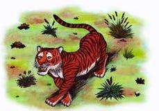 Wild Tiger (Zen Pictures II, 2012) Stock Images