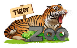 Wild tiger at the zoo sign. Illustration Stock Image