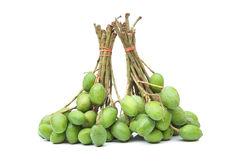 Wild tiny mangoes. / Mangifera coloneura Kurz Stock Photo