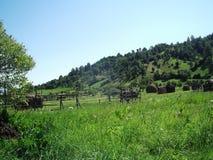 Wild Transylvania. A little something from Maramureș County, Romania Stock Photo