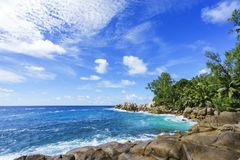 Wild tropical beach at police bay on the seychelles 2. Wild tropical beach with palm trees in a jungle, sand and a rough sea at police bay on the seychelles on a Royalty Free Stock Photos