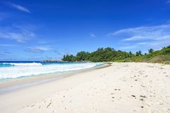 Wild tropical beach at police bay on the seychelles 2. Wild tropical beach with palm trees in a jungle, sand and a rough sea at police bay on the seychelles on a stock photo