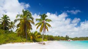 Wild tropical beach Stock Image