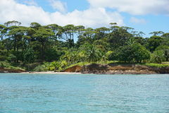 Wild tropical coastline of Panama Central America Royalty Free Stock Photography