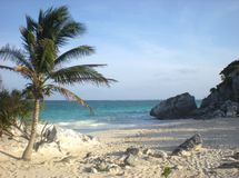 Wild tropical island Stock Photography