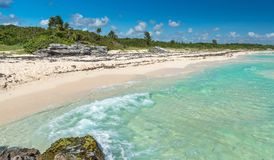 Wild Tropical Sandy Beach with Turquoise Waters. Caribbean Sea Royalty Free Stock Photography
