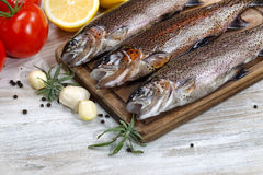 Wild Trout being prepared for Cooking. Close up of fresh wild trout being prepared, skin coated with oil, for cooking on server board. Herbs, tomatoes, lemon and Royalty Free Stock Images