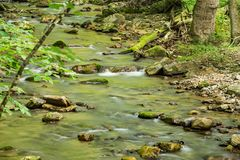 Wild Trout Stream in the Mountains. A wild mountain trout stream located in the Appalachian Mountains of Virginia, USA Stock Images