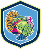 Wild Turkey Side View Shield Retro Stock Photo