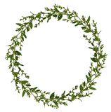 Wild twigs with green leaves and small white flowers in a round frame