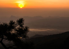 Wild twilight time in Phukradueng National Park Royalty Free Stock Images