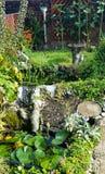 Wild urban garden ponds  and garden. Attracting wildlife and nature to your urban garden by introducing garden ponds Royalty Free Stock Photos