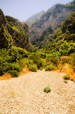 Wild valley lush vegetation. Megalo Seitani, Samos Stock Photography