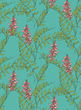 Wild vetch pattern Royalty Free Stock Photos
