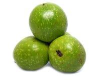 Wild wallnuts Royalty Free Stock Images