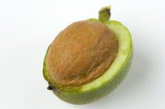 Wild walnut Stock Photo