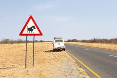 Wild warthog warning road sign Outjo, Namibia Royalty Free Stock Photography