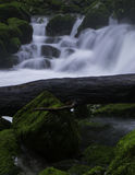 Wild water Royalty-vrije Stock Afbeelding