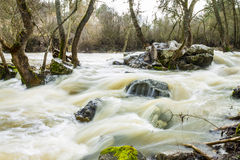 Wild Water Royalty Free Stock Photography
