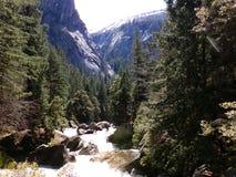 Rapids, wild water creek - Yosemite US National Park royalty free stock photo