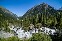 Wild water. Karakol river in Kyrgyzstan Stock Images