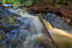 Wild water Stock Photos