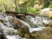 Wild water of waterfall in deep forest II Stock Photos