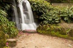 Wild water waterfall