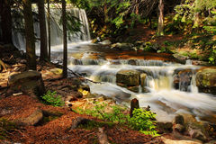 Wild waterfall in the forest, water, stream, stones, reflections, nature Stock Photo