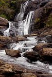 Wild waterfall in Horton Plains National Park Royalty Free Stock Image