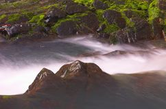 Wild waterfall and moss. Near it Royalty Free Stock Photos