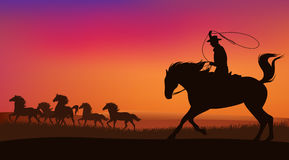 Wild west horses and cowboy. Cowboy chasing the herd of wild mustang horses at sunset - wild west landscape vector Royalty Free Stock Photography