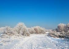 Wild winter scenery Royalty Free Stock Photos