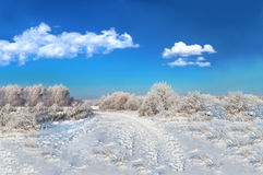 Wild winter scenery and cumulus clouds Royalty Free Stock Image