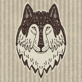 Wild wolf head Royalty Free Stock Photos