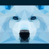 Wild wolf stares forward. Nature and animals life theme background. Abstract geometric polygonal triangle illustration Royalty Free Stock Images