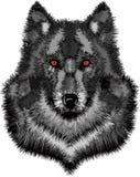 Wild wolfshoofd stock illustratie