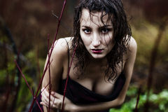 Wild woman's face under rain Stock Photos
