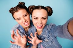 Wild women danger. Close up photo of magnificent fabulous funky ladies attracting boys roaring moving making hands like. Claws wearing denim clothing isolated stock images