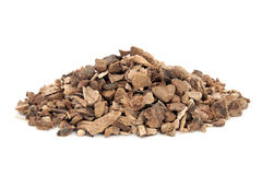 Wild Yam Root Herb Stock Photography
