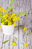 Wild yellow flowers in bucket Royalty Free Stock Image