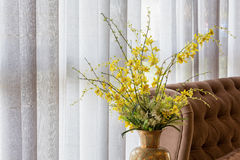 Wild yellow orchid in a vase. Wild yellow orchid in a ceramic vase decorated near a sofa and white curtain stock image