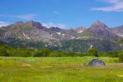 Wildcamping on Lofoten. Lofoten islands, Norway, scenic place for wildcamping Royalty Free Stock Photos