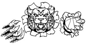 Wildcat Basketball Ball Mascot Stock Image