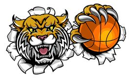 Wildcat Basketball Ball Mascot Stock Photography