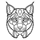 Wildcat lynx mascot head isolated sketch line art Royalty Free Stock Photo